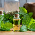 Lemon Balm Oil | Guide To Essential Oils | Andrew Weil, M.D