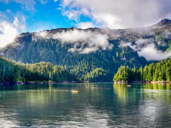 alaska cruise with doctor weil
