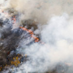Surviving Smoke Damage? | Andrew Weil M.
