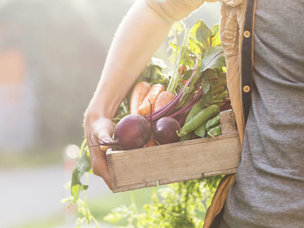 What's The Planetary Diet? | Diets &amp&#x3B; Weight Loss | Andrew Weil, M.D.