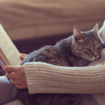 Pets & Your Health | Weekly Bulletins | Andrew Weil, M.D.