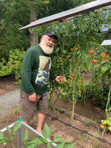 Tomatoes In The British Columbia Garden | Andrew Weil, M.D.