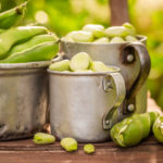 The Might Fava Bean | Dr. Weil's Daily Tips