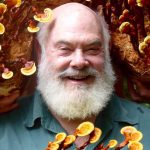 Fungi: A Dr. Weil Favorite | Healthy Living | Andrew Weil, M.D.