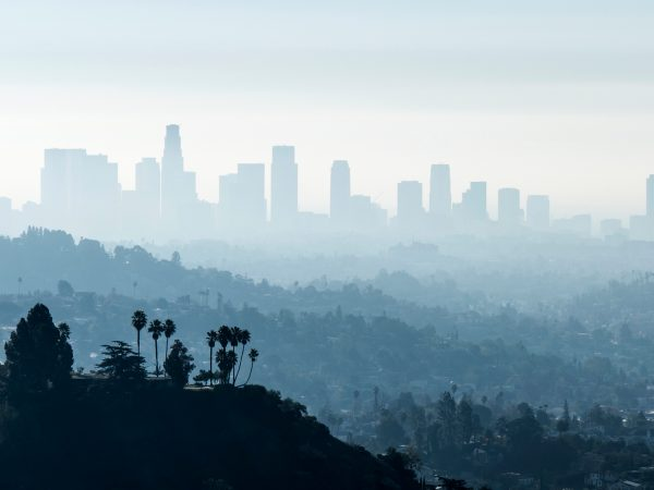 Air Pollution May Lead To Obesity |Weekly Bulletins | Andrew Weil, M.D.