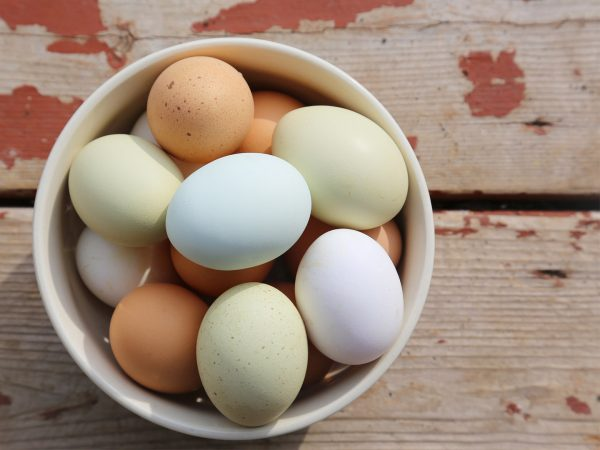 Too Many Eggs? | Nutrition | Andrew Weil, M.D.