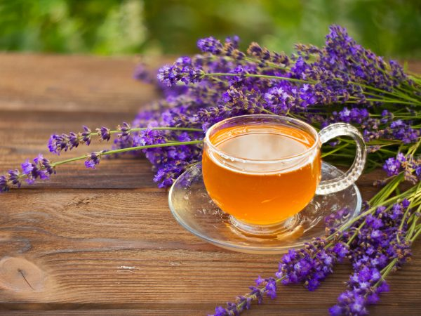 Lavender Ingestibles For Anxiety And Depression? | Stress & Anxiety | Andrew Weil, M.D.