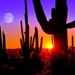 Can Long Summer Days Affect Sleep? | Sleep Issues | Andrew Weil, M.D.
